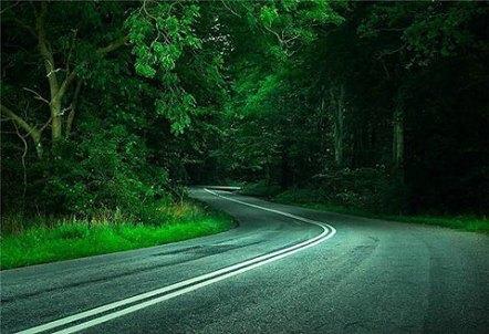 beautiful-road-61